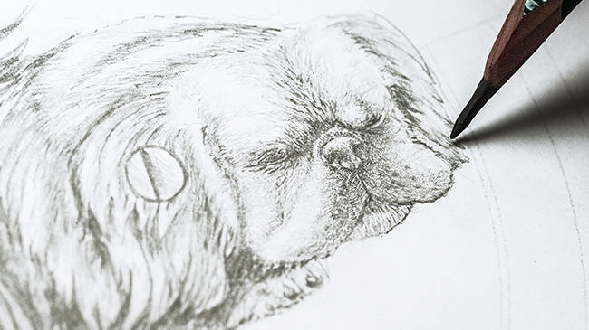 Jaquet Droz, Chinese New Year, Petite Heure Minute Dog, Sketching